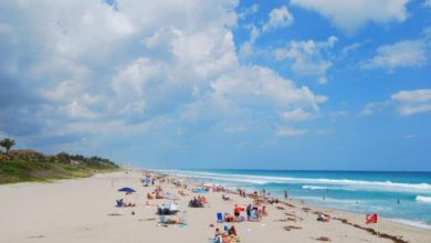 Photo of Delray Beach Travel Guide